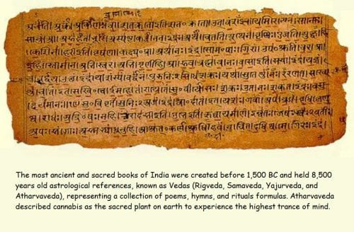 cannabis reference in atharva veda