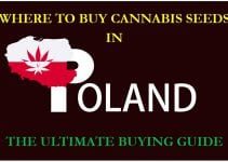 Cannabis in Poland