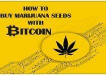 cannabis and Bitcoin