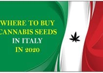 Cannabis in Italy