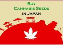 Cannabis in Japan