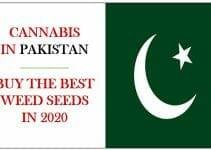 Cannabis in Pakistan