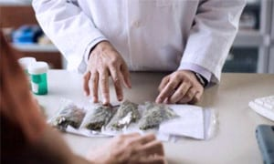 Cannabis in Spain