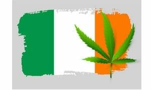 Cannabis in Ireland
