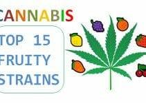 best fruity cannabis strains
