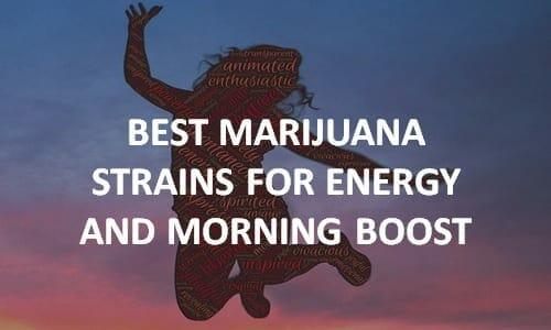 best cannabis strains for energy