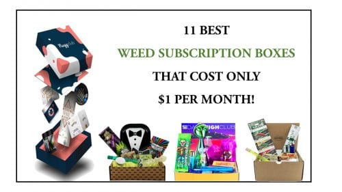Best Weed Subscription Box