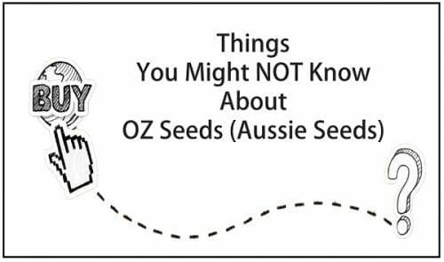 OZ Seeds