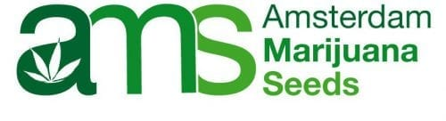 best online seed bank 2021