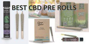 Best CBD Pre Rolls
