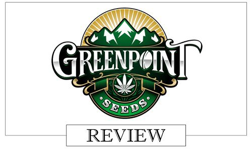 Greenpoint Seeds review