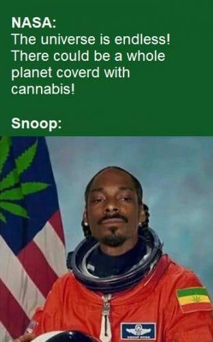 Snoop Weed Meme