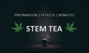 Stem Tea from Weed